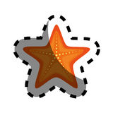 Star fish isolated icon. Illustration design Royalty Free Stock Photography