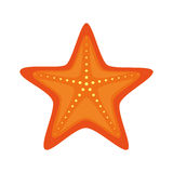 Star fish isolated icon. Illustration design Stock Images