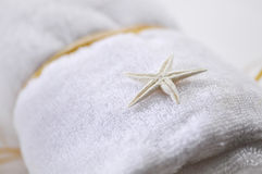Star fish shell Royalty Free Stock Photo