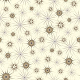Star-flowers Royalty Free Stock Photography