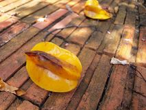 Star fruit on brick Royalty Free Stock Images