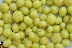 Star gooseberry fruit Royalty Free Stock Photo