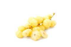 Star gooseberry fruit Stock Photography