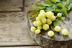 Star gooseberry Stock Images