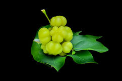 Star gooseberry and leaves Royalty Free Stock Photography