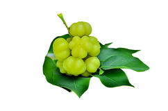 Star gooseberry and leaves Stock Photos
