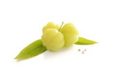 Star l'isolato delle foglie e dell'uva spina su fondo bianco Fotografia Stock Libera da Diritti