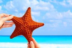 Star les poissons Image libre de droits