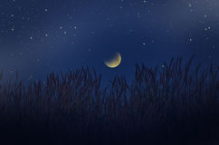 Star lights in the dark waning moon over the grass Stock Image