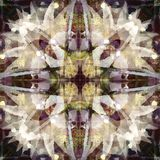 STAR, CROSS MANDALA WITH TEXTURE LIKE FEATHERS, IN PURPLE, WHITE, GRAY, YELLOW WITH DARK BACKGROUND stock illustration