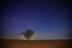 Star. Milky way galaxy Sampanbok Grandcanyon of Thailand Royalty Free Stock Photos