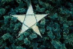 Star ornament of Christmas tree Stock Photos