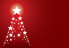 Star pine christmas background Stock Images