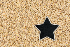 Star ,pointer, price, tag, lies on barley. With space for your text Royalty Free Stock Photos