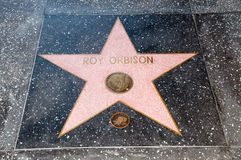 The  star of  Roy Orbison Stock Photography