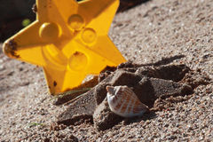 Star sand mold Royalty Free Stock Image
