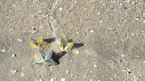 Star on sandy beach stock footage