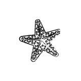 Star sea creature. Icon  illustration graphic design Stock Photos