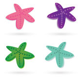 Star sea. Set of colorful star-fishes  . Beautiful color combinations Royalty Free Stock Photo