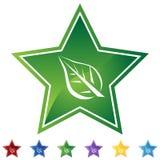 Star Set - Leaf Stock Images