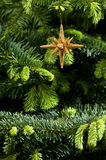 Star shape Christmas ornament in gold Stock Images