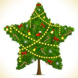Star shape Christmas Tree Royalty Free Stock Image