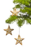 Star shape cookies at Christmas tree Royalty Free Stock Photos