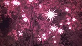 Star Shaped Christmas Decoration and Lights stock footage