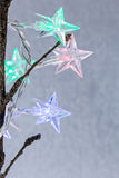 Star shaped christmas light on blurred background Stock Image
