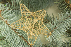Star shaped Cristmas decoratoin on  a fir branch Royalty Free Stock Photos
