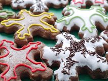 Star-shaped gingerbread cookies Stock Image