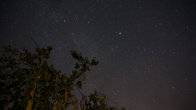 Star sky Stock Image