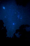 Star in the sky Royalty Free Stock Images