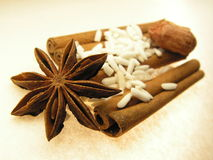 Star, spice and rice. Fructus anisis stellati of Illicium verum ( scientific version ), star anise is the seed pods of the star anise tree. The cinnamon sticks Royalty Free Stock Photo