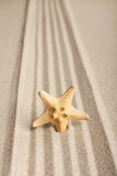 Star sticking out in the sand Royalty Free Stock Photography