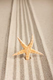 Star sticking out in the sand Royalty Free Stock Photos