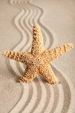 Star sticking out in the sand Stock Image
