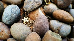 Star Stone. Scree, Grit, Gravel Stock Image