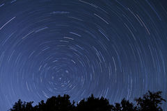 Star tails - 1 hour exposure. An hour exposure over tree tops with the north star in the frame Stock Images