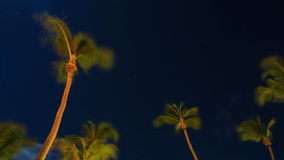 Star Time Lapse Aruba. V5. Star time lapse in Aruba with palm trees and clouds stock footage
