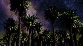 Star Time Lapse, Milky Way Galaxy Moving Across the Night Sky and Palms vector illustration
