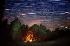 Star tracks over the forest Royalty Free Stock Photography
