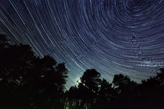 Star trail in the night sky Royalty Free Stock Photo