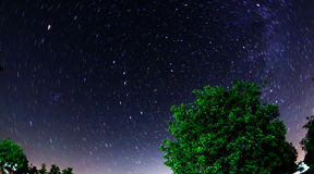 Star trail sky. Walnut tree with milky way background and star trails Stock Images