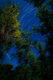 Star trail. Stars in the night sky Royalty Free Stock Photo