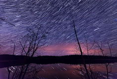 Star trails along lake with trees Stock Photography