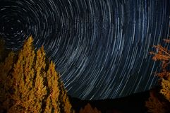Star trails around pole star with a tree illuminated by a campfire Stock Photos