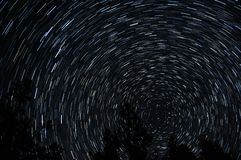 Star trails around pole star with tree silhouettes in foreground Royalty Free Stock Photography