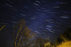 Star trails and leafless tree Royalty Free Stock Photography