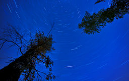 Star Trails in the night Stock Photography